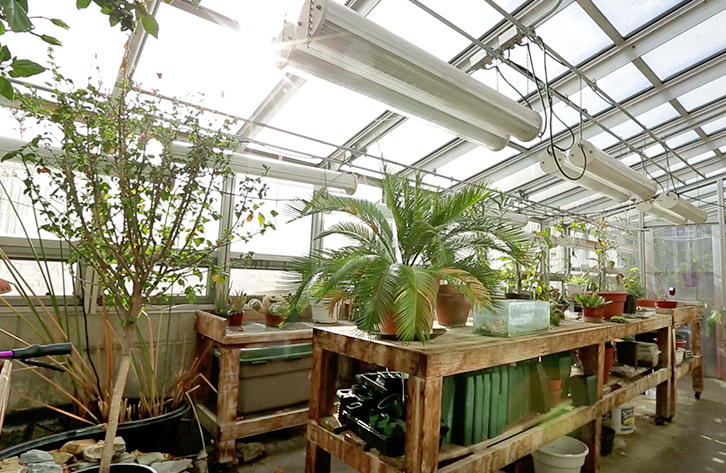 Fisher Greenhouse