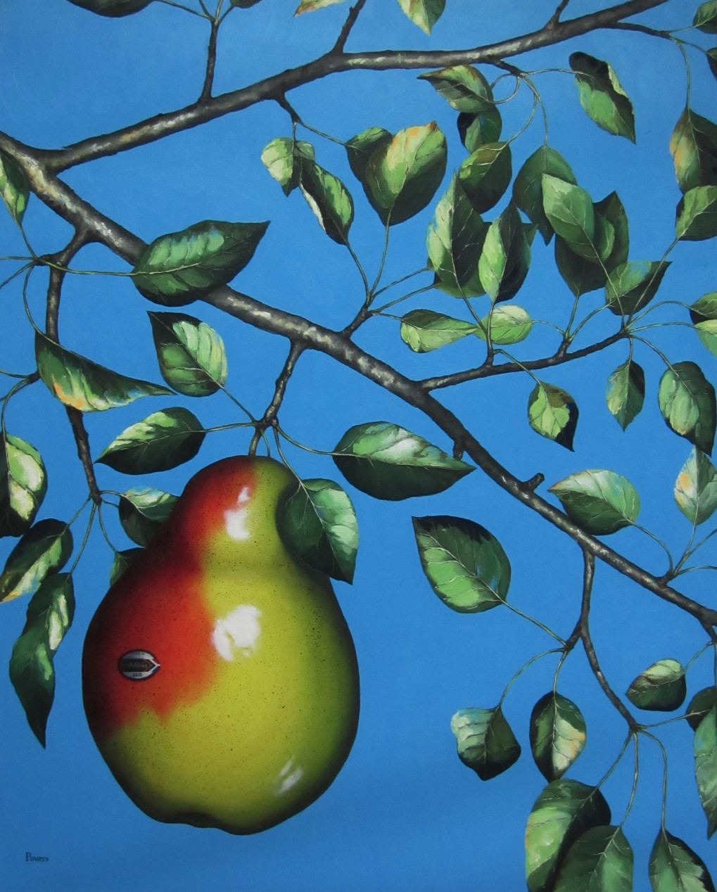 Susan Powers painting, Pear